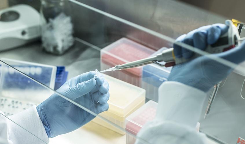 Na zdjęciu widoczne dłonie osoby pracującej w laboratorium wraz z pipetą